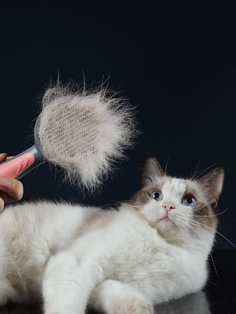 Pet Cat Grooming Brush Hair Needle Comb Cleaner One Key Cleaning