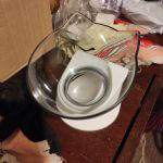 Single Cat Style Pet Food Water Feeder Bowl with Raised Stand